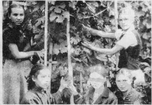 Сестры Нина и Галя Лебедевы, Аня Голубева