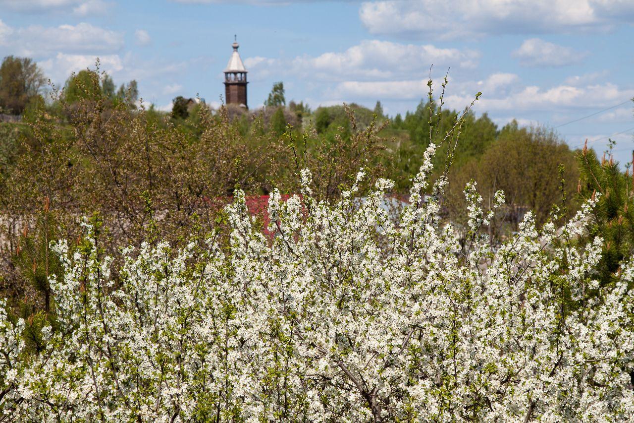 Весна в Юрьевце